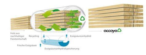 Pergola tarasowa z drewna Accoya